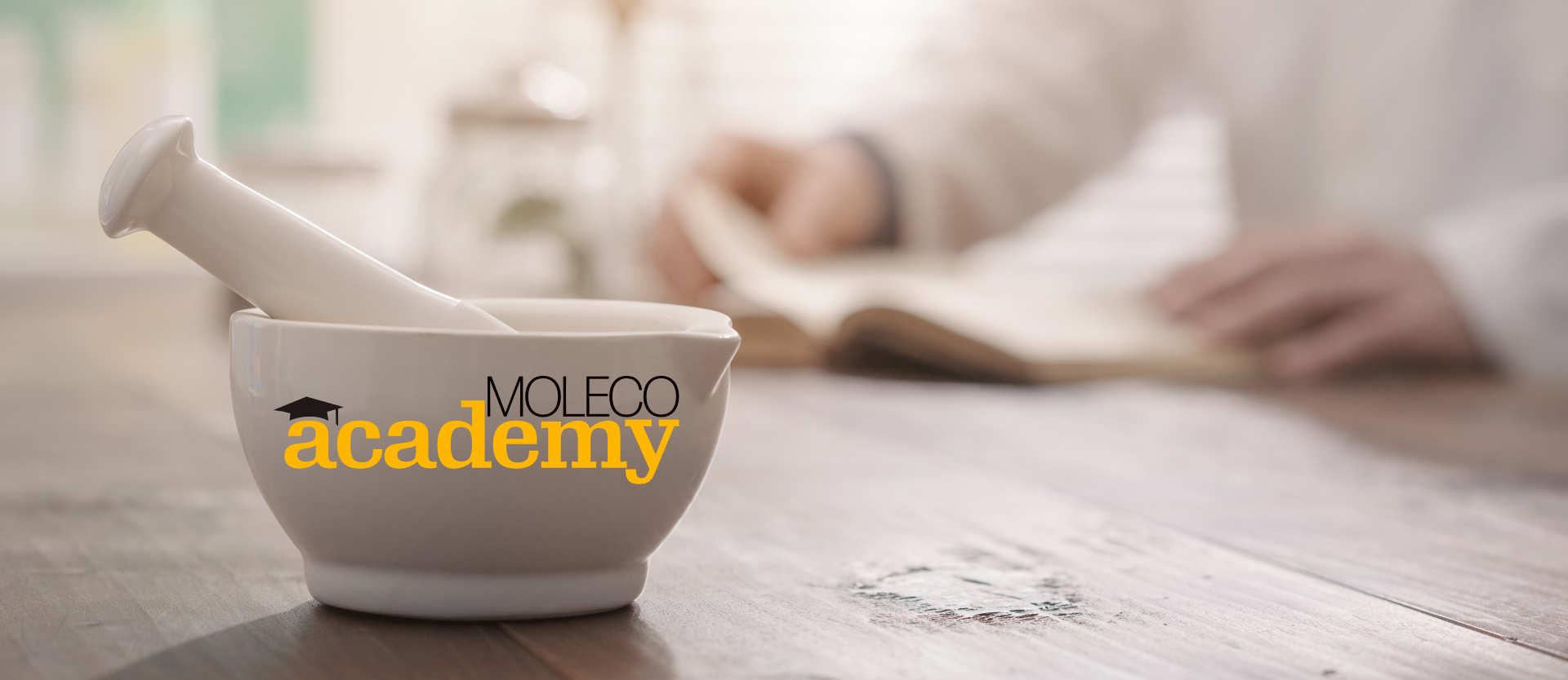 Strumenti per lo studio in MOLECO academy
